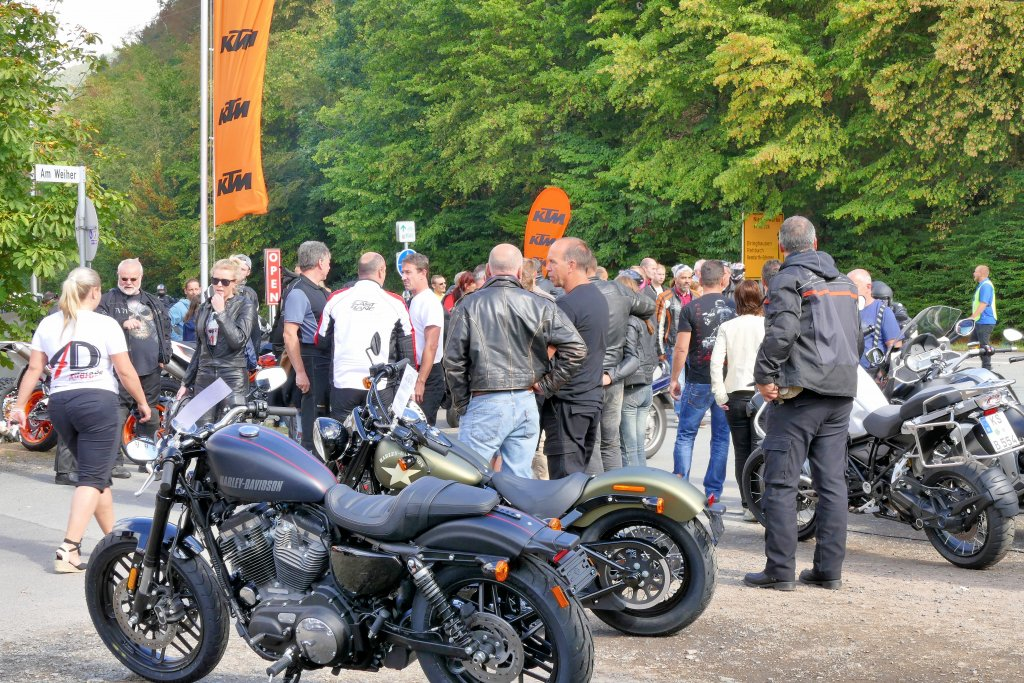 Harley Kassel